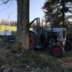 Eicher ED 16/II - Holzarbeit