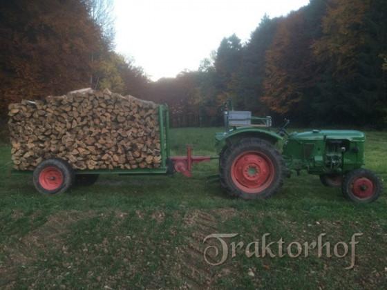 Deutz D30 beim Brennholztransport