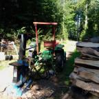 Kleiner Waldschrat im Einsatz