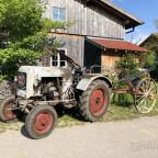 Grummet-Ernte | Eicher ED 16/II | Bautz SE 3