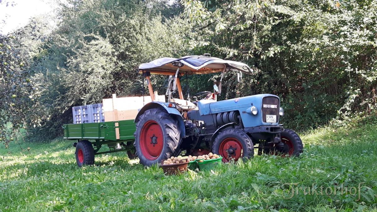 Eicher 3009