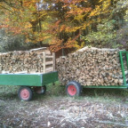 Brennholz fertig zum Abtransport